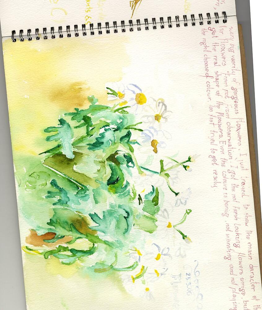 flowers watercolour sketch by ieva andersone