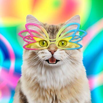 Happy cat wearing colourful glasses by ArdeaOnline