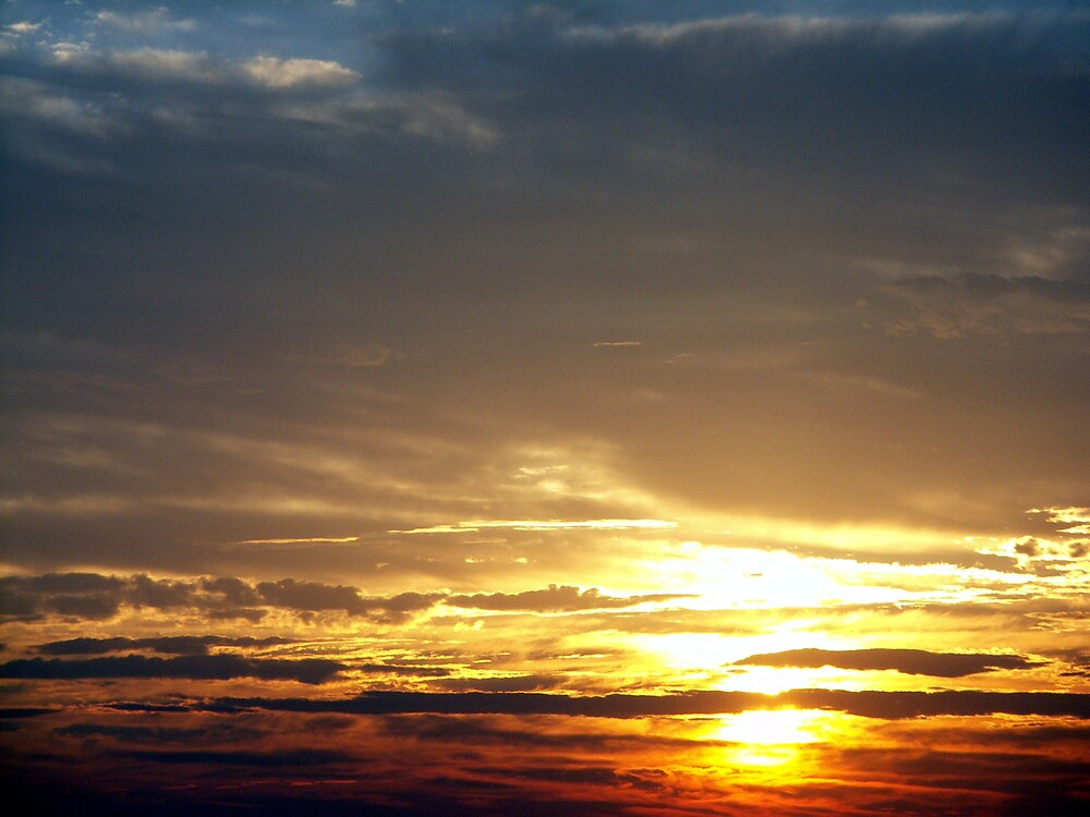 Texas Sunrise by Marilyn Jones