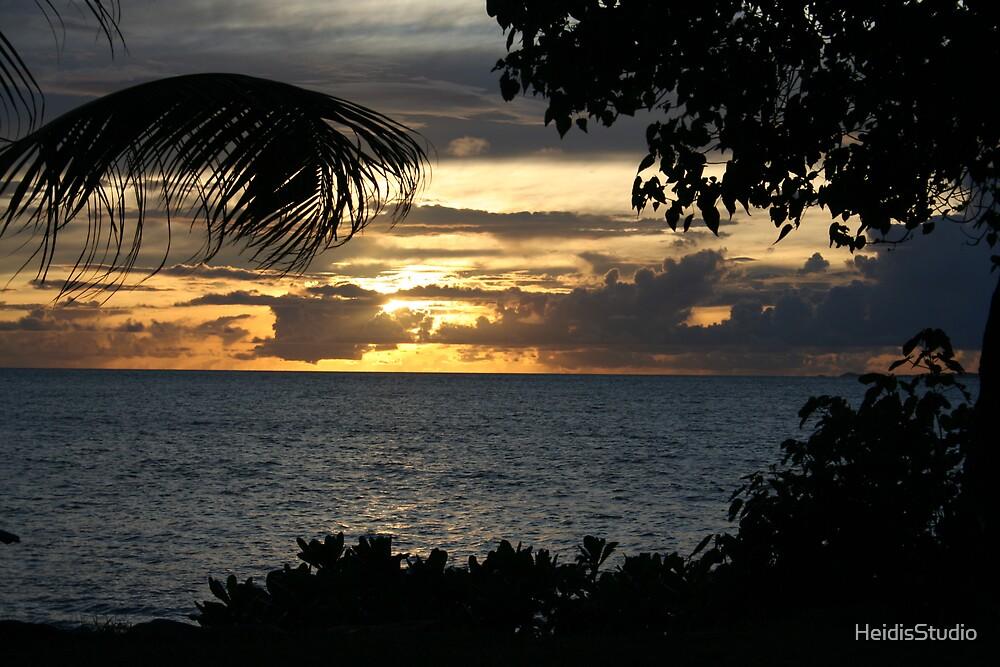 Fiji by HeidisStudio