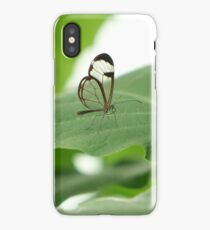 Glasswing iPhone Case/Skin