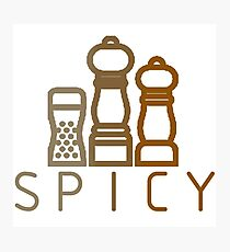 spicy spices Photographic Print