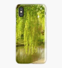 Willow Trees In Spring  iPhone Case/Skin
