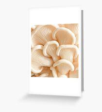 Marvelling the Mushroom - II Greeting Card
