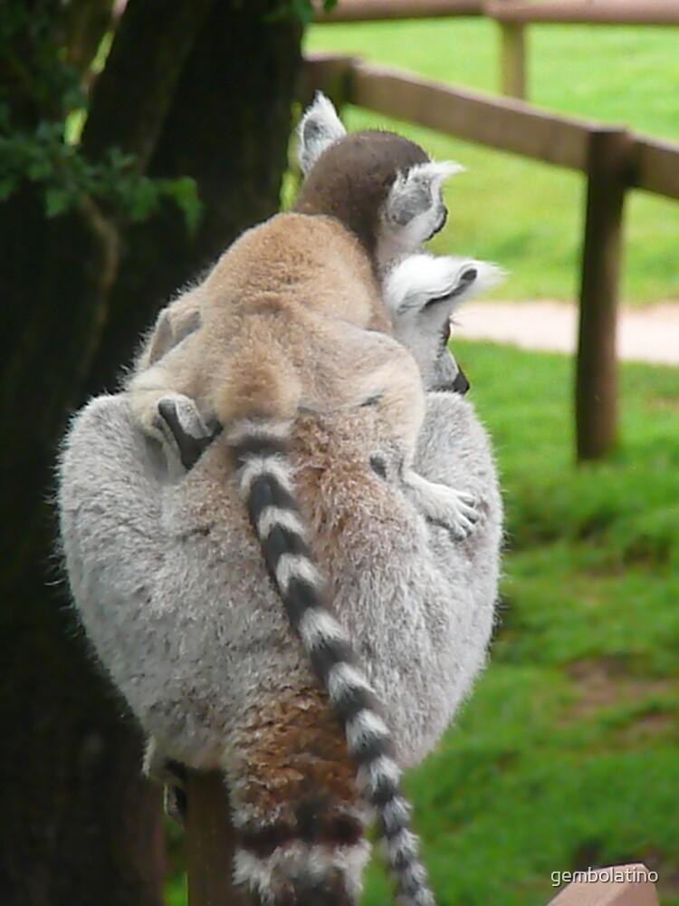 Lemurs by gembolatino