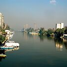 The Nile by Shannon Kennedy