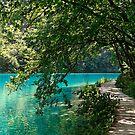 Plitvice Lakes III by Luca Mancinelli