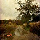 Autumn Farm by kaneko