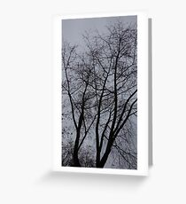 Bare Branches II Greeting Card