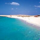 The Red Sea, Hurghada , Egypt by Shannon Kennedy