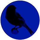 Canary Cry Circle Logo by CanaryCryRadio