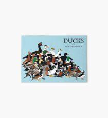 Ducks of North America Art Board