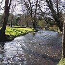 Blarney Castle - River by shanmclean