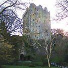 Blarney Castle by Shannon McLean