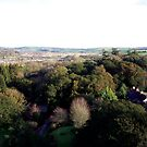 Blarney 2 - The View by Shannon Kennedy