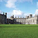 Irish Castle by Shannon McLean