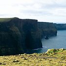 Cliffs of Moher by Shannon Kennedy