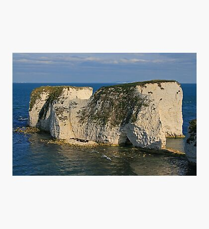 Sympathy for Old Harry Photographic Print