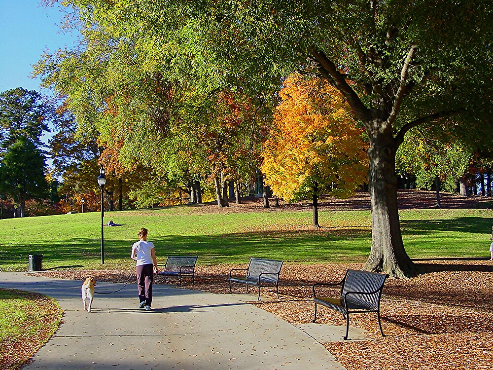 Taking An Autumn Stroll! by mlou