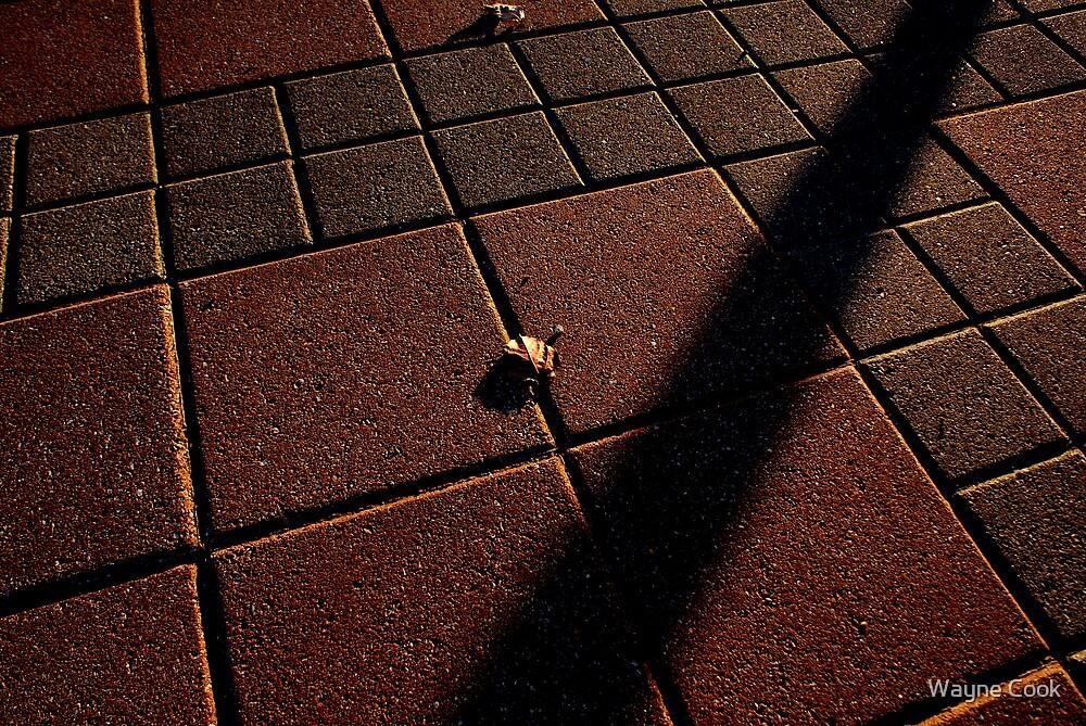 Nearly Alone by Wayne Cook