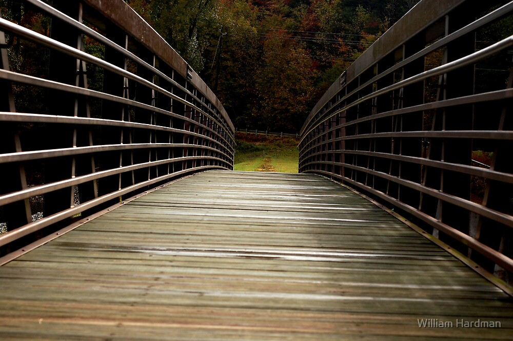 Bridge Over Damed Waters by William Hardman