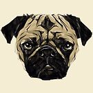 Pug by JoeConde
