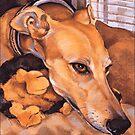 Greyhound Grace ~ Graphic by Jane Oriel