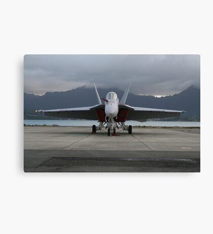 Stormy Flight Canvas Print