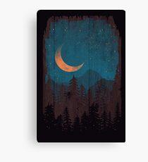 Those Summer Nights... Canvas Print
