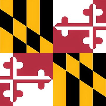 Maryland Flag by rjburke24