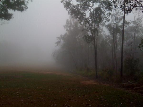 Fog_2 by zacmonty