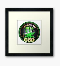 CBD Cannabinoids in Hemp oil Cures  learn truth about use of hemp oil to cure illness and pains. Framed Print