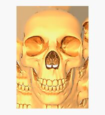 human skull gold Photographic Print