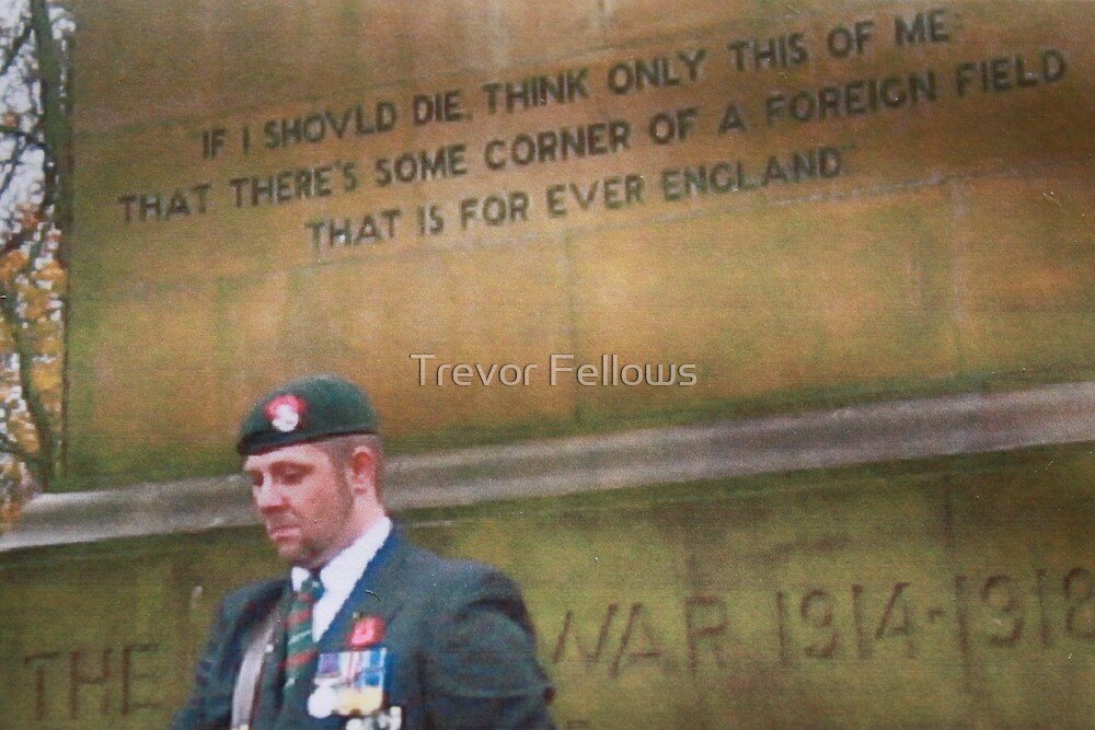 Remembrance 11th of the 11th by Trevor Fellows