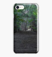 Rainforest Walk iPhone Case/Skin