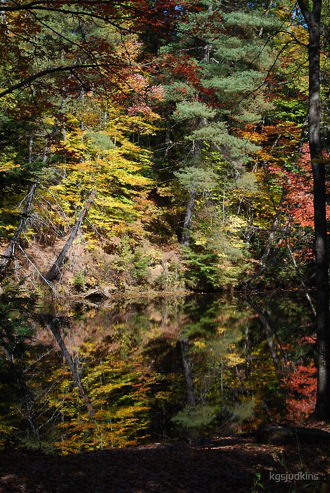 Reflections in NH by kgsjudkins