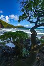 Maui Hana Hamoa Beach by photosbyflood