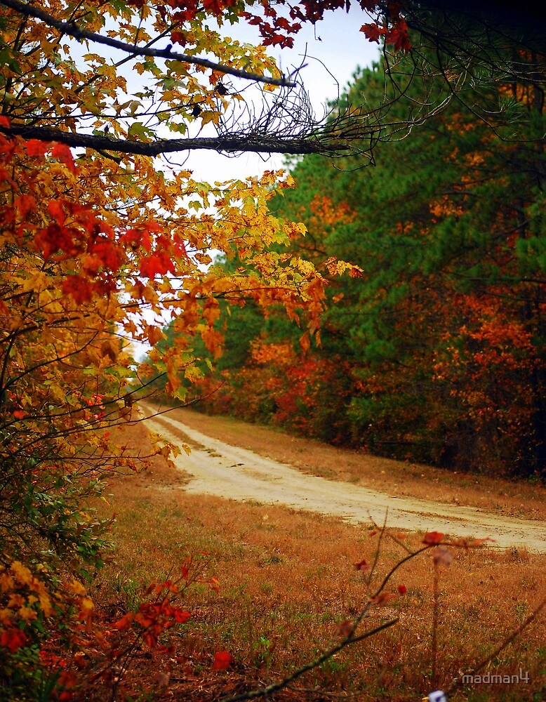 Fall Dirt Road by madman4