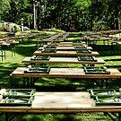 Some benches - and it's summer by Kurt  Tutschek