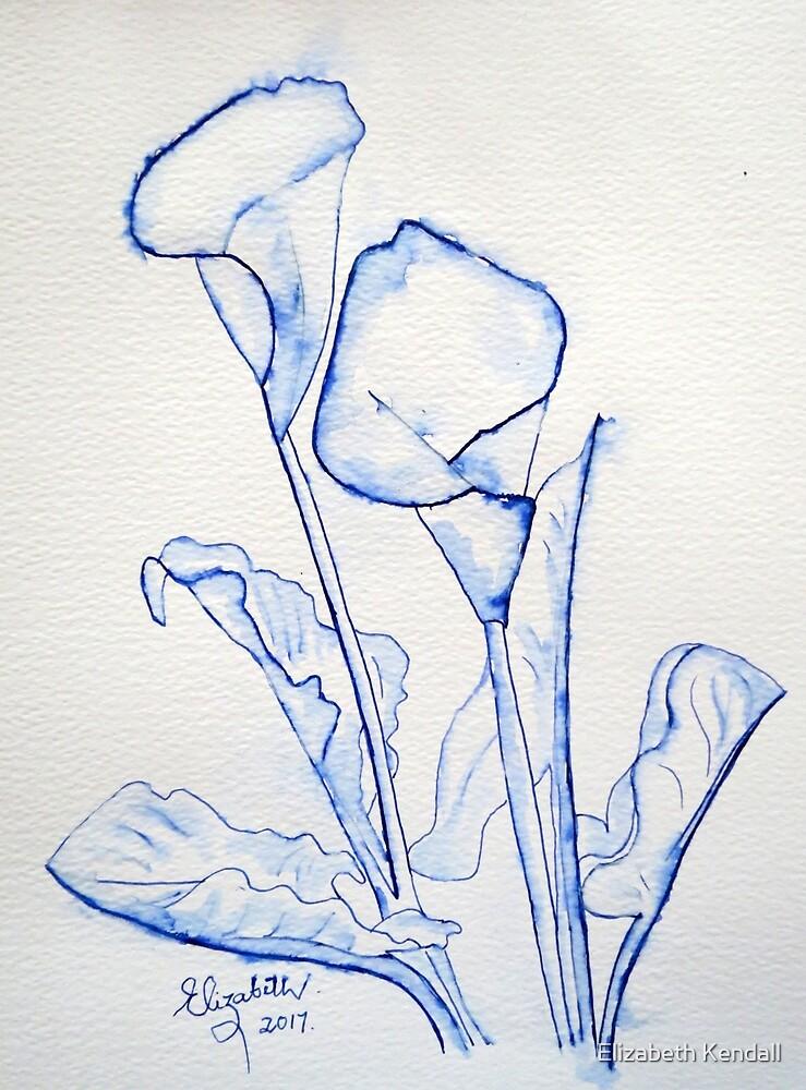 Arum lily by Elizabeth Kendall
