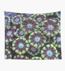 Alveopora coral pattern Wall Tapestry