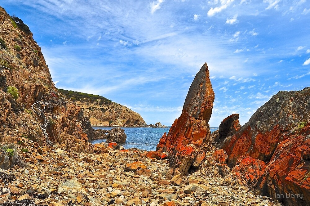 Natures Sculptur by Ian Berry