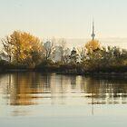 Soft Silky Ripples - Toronto Skyline Through the Trees by Georgia Mizuleva