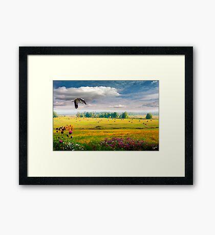 Golden Valley Framed Print