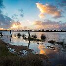 Flooded by Matt Fricker