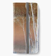Lake Michigan Through the Trees iPhone Wallet/Case/Skin