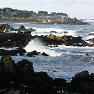 Pacific Grove and Beach by Sandra Gray