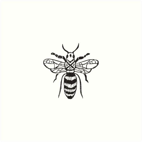 Linocut bee minimal nature insect printmaking black and white bees wasps by monooprints