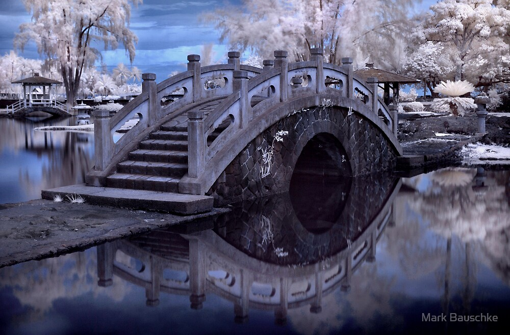 Crossing Over by Mark Bauschke