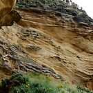 It's Sedimentary! Clashach Cove, Moray  by SiobhanFraser